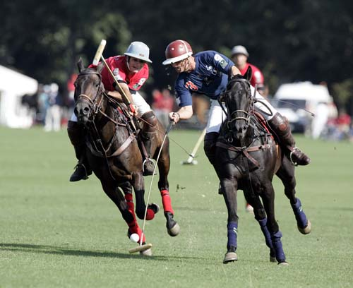 Learn more about the equestrian sport of polo …