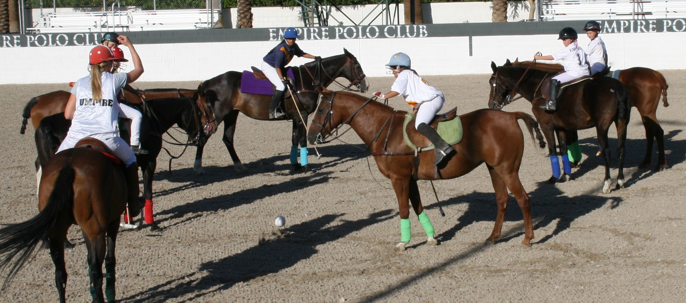 Summer Polo Camp for Kids @ Empire Polo Club