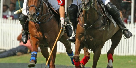 Polito Pieres (the player on the right).  Photo Credit Alex Pacheco.