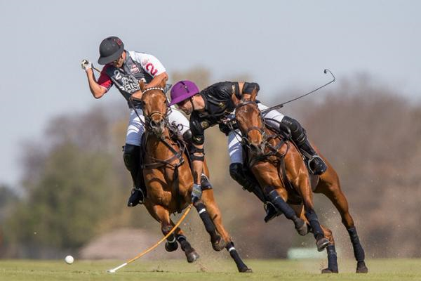 Facundo Pieres on the ball for Ellerstina in Jockey Club Open play.