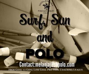 surf sun and polo 2