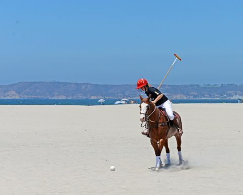 Polo on the Beach - No Mark